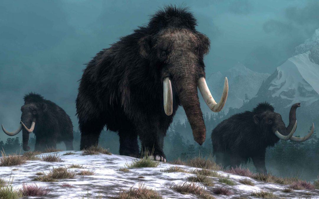 Norwegian history timeline | the ice ages